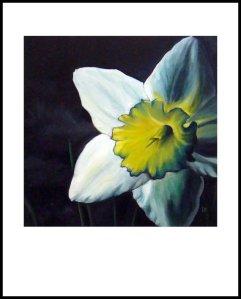 Leslie Daffodil